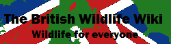 British Wildlife Wiki