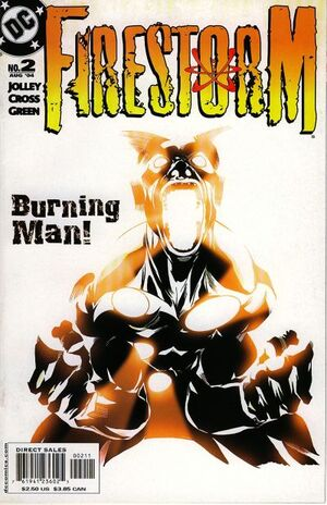 Cover for Firestorm #2