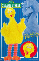 Bigbirdportraitsposter