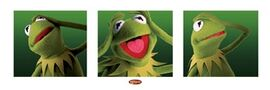Poster.kermit3