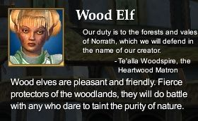 Wood Elf (Character Race)