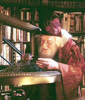 Dumbledore and Fawkes.jpg