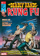 Deadly Hands of Kung Fu 7