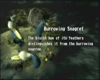 Reel4_Burrowing_Snagret.png
