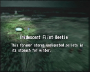 Reel13 Iridescent Flint Beetle