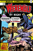Werewolf by Night 29
