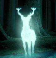 Harry Potters&#39; Patronus