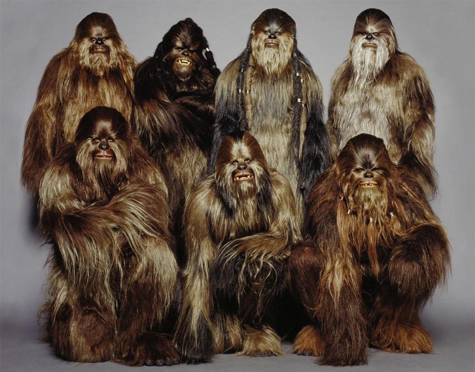 Wookiee wookieepedia the star wars wiki