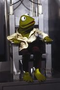 Kermit.Chair