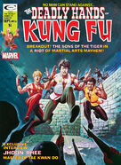 Deadly Hands of Kung Fu 16