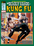 Deadly Hands of Kung Fu 17