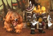 RexxarMishaTLSH