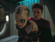 Seven of Nine broken
