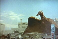 Rodan7