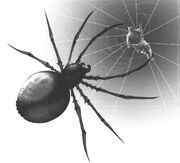 Giantspider