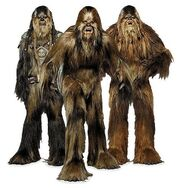 Wookies