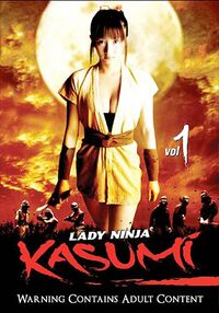 Lady ninja kasumi