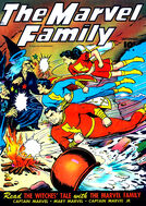 Marvel Family 4