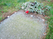 Wittgenstein Gravestone