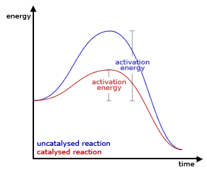 Catalyst effect
