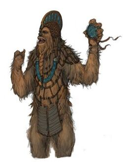 Wookiee concept