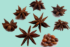StarAnise
