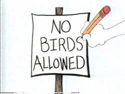 NoBirdsAllowed