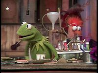 Kermit&amp;Beaker