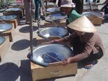 Vietnam Solar Serve Fair 2006.jpg
