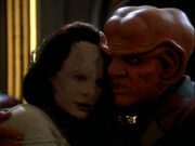 Quark and Natima Lang