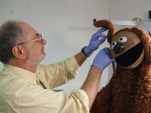 Working on Rowlf