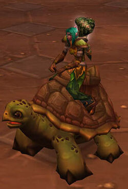 Ridingturtle