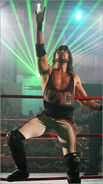 Sean-Waltman