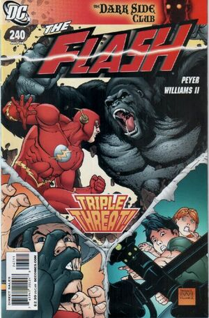 Cover for Flash #240