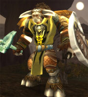 Tabard of Fury
