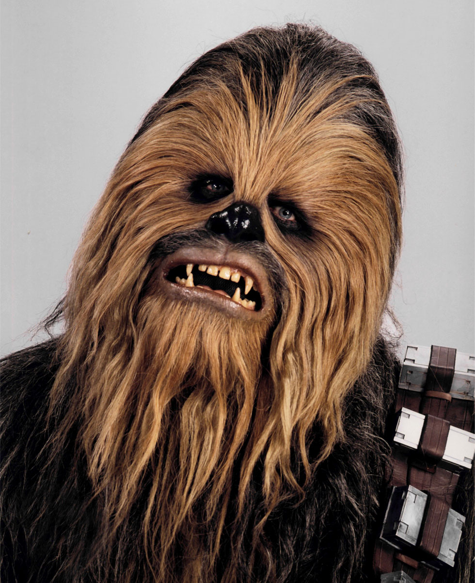 Chewbacca wookieepedia the star wars wiki