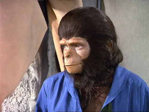 Kira - Planet of the Apes: The Sacred Scrolls