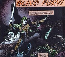 Blindfury