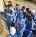 Girl Guides Association of Malaysia - Glorious sunshine.JPG