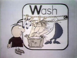 W-Wash