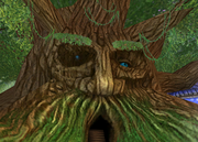 Bartleby The Grandfather Tree