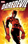 Daredevil Visionaries Vol 1