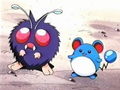 EP099 Venonat con Marill.png