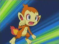 EP471 Chimchar de Polo