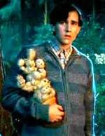 Neville Longbottom holding his cactus plant