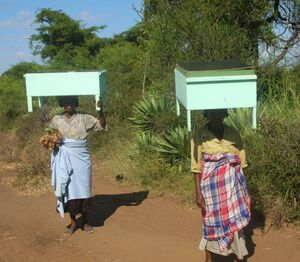 ADES - Solar cookers carried home - March 2008