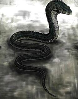Slytherin&#39;s Basilisk