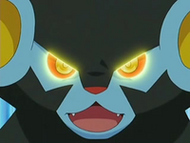 EP528 Luxray usando su visin especial