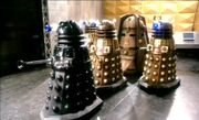 Cult of Skaro