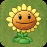 http://images2.wikia.nocookie.net/__cb20090521221035/plantsvszombies/images/d/de/Sunflower2.png